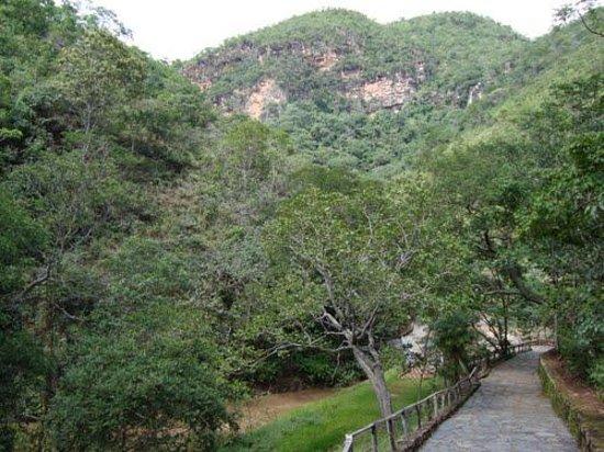 Municipal Park Photo