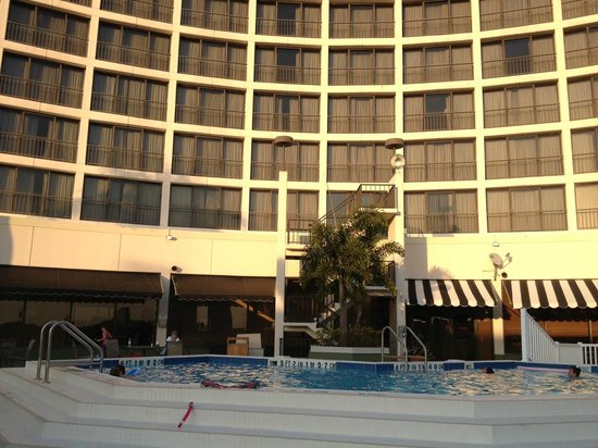 Tampa Airport Marriott: Poolside at Marriott Tampa Airport