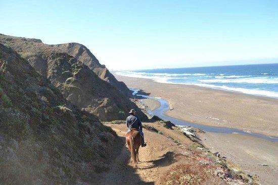 The Elk Cove Inn & Spa: Horseback Riding