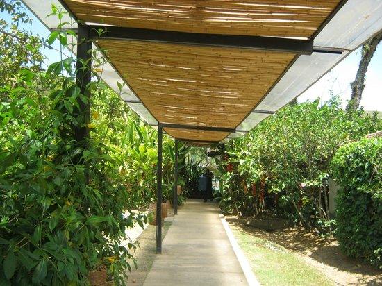 Hotel Fazenda 3 Pinheiros: corredores de acesso