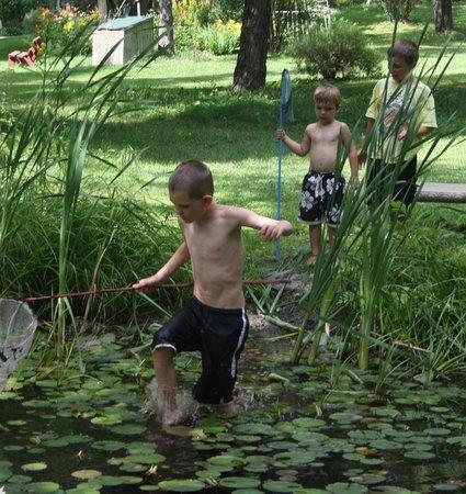 Woodland Echoes Resort: Frog Ponds