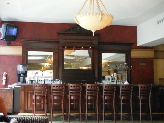 Paradise Island Harbour Resort All Inclusive: Beautiful Lobby Bar