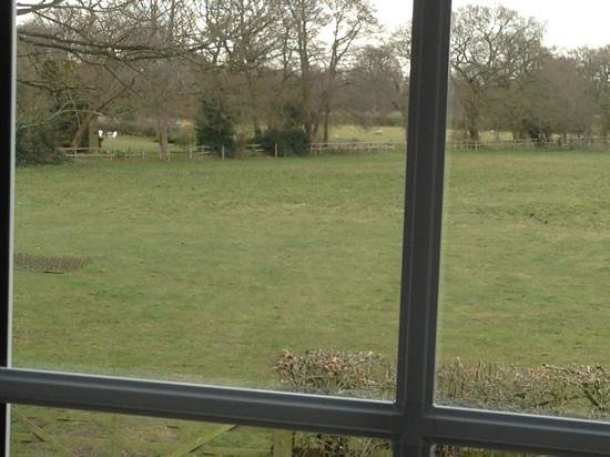 The Dog Over Peover: view from the room