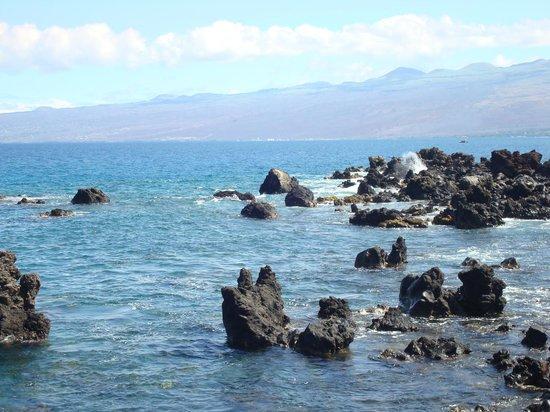 Mauna Lani Bay Hotel & Bungalows: Shoreline trail
