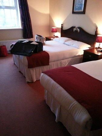 Woodford Dolmen Hotel: Double + Single bed