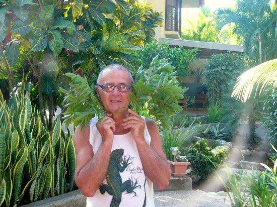 Casa Buenavista Bed & Breakfast: giardino