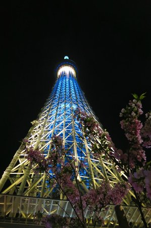 Oak Hotel: Tokyo Skytree - from the hotel 2 stops by metro + Skytree train