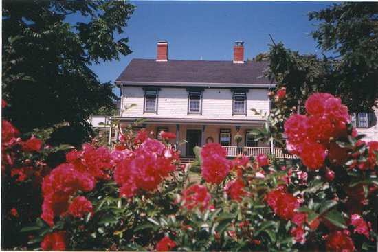 1826 Maplebird House Bed & Breakfast: Maplebird House Bed & Breakfast in Lunenburg, NS