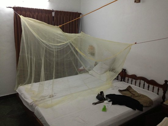 Hotel Sea View Palace: Mosquitoes in the room