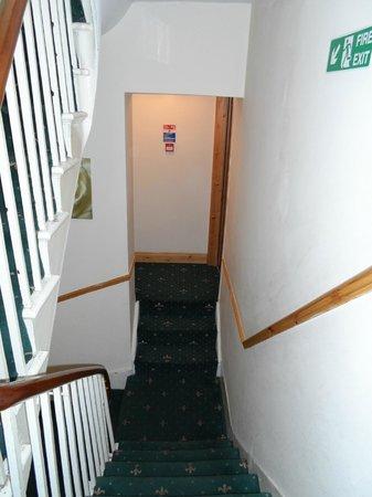 Elmwood Hotel: Hoteltreppenhaus