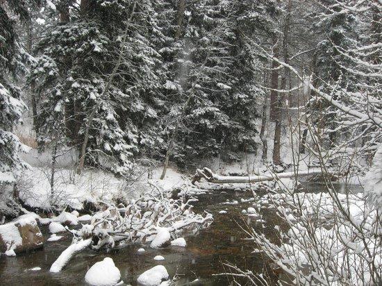Estes Park Condos: creek