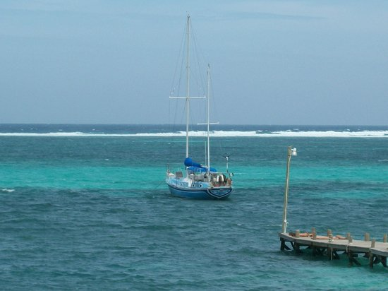 Marin's Guesthouse: veiw of the reef