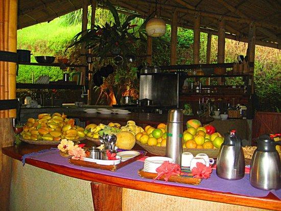 Finca Exotica Ecolodge: Casa Grande - Kitchen