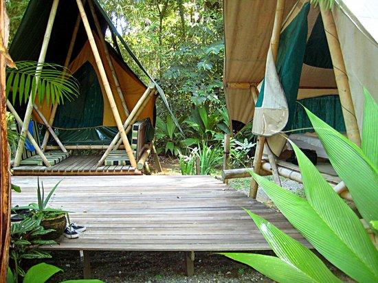 Finca Exotica Ecolodge Tiki tents & Tiki tents - Picture of Finca Exotica Ecolodge Carate - TripAdvisor