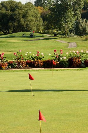 Royal Woodbine Golf Club Photo