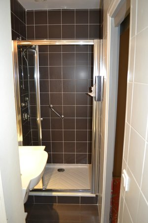 Louison Hotel: Decent size shower