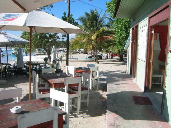 Perlita Morena: A la orilla de la playa de Bayahibe