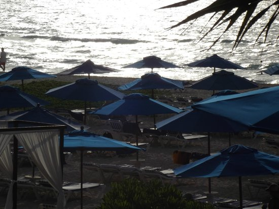 ذا ريف بلاياكار أول إنكلوسيف بيتش ريزورت: beach