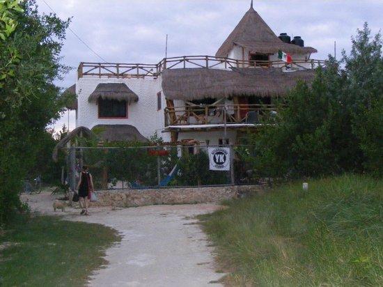Villa los Mangles : mangles