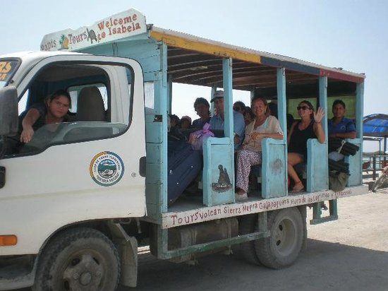 Hostal La Jungla: Transporte