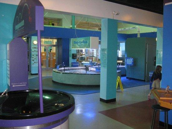 Dinosaur Area Picture Of Imaginarium Science Center