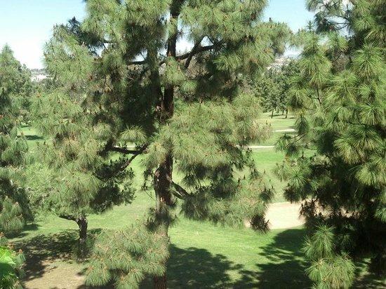 Hilton Garden Inn Los Angeles Montebello: view12