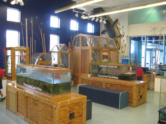 IMAG History & Science Center: Science / exploration area
