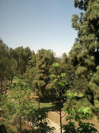 Hilton Garden Inn Los Angeles Montebello: view07