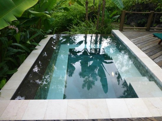 Blancaneaux Lodge: Private Pool
