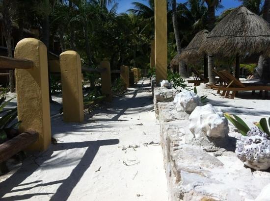 Amaite Hotel & Spa: Amaite Hotel on the playa...!