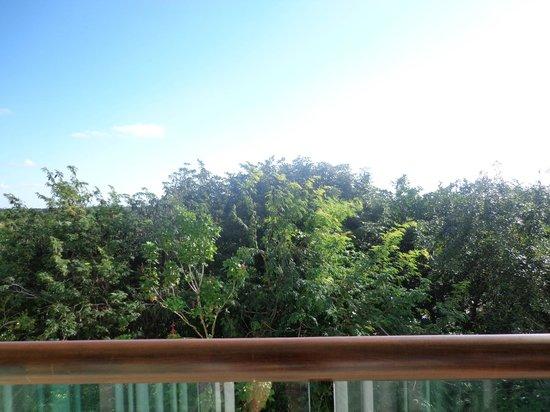 Ocean Breeze Riviera Maya Hotel: Desde el balcón