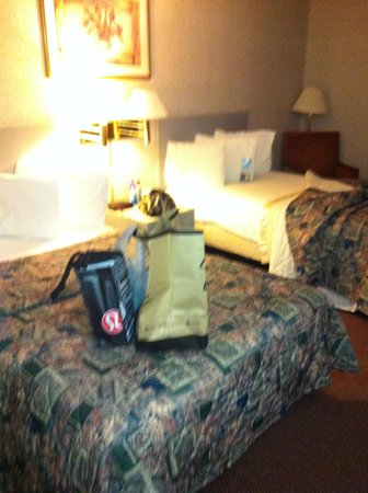 Travelodge Inn and Suites Albany : blurry (not smokey  lol)
