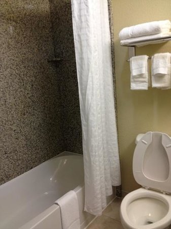 Country Inn & Suites By Carlson, Pensacola West: ok shower. tub wouldn't drain water