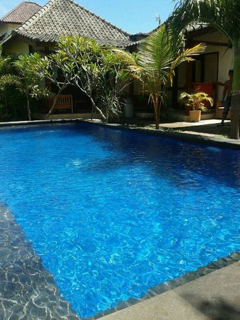Aaliku Bungalows: The pool at Aaliku