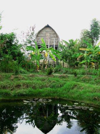 Ganesha Kampot Eco Guesthouse and More: My hut at Ganesha Eco Lodge