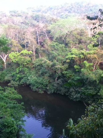 duPlooy's Jungle Lodge: View from the end of the catwalk off of the porch