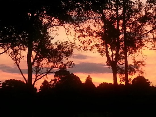 Lovedale Cottages : the sunset from our back deck