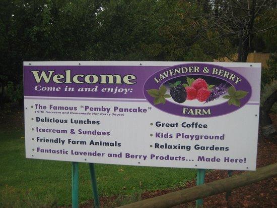 Pemberton Lavender and Berry Farm: Sign 3