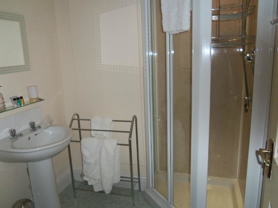 Bannerman Bed and Breakfast: Shower room of The Snug