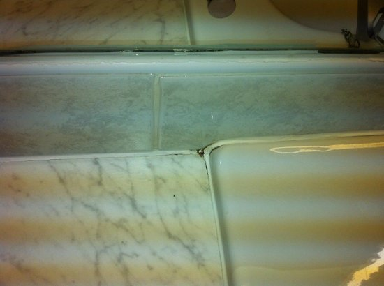 Dunadry Hotel: Mouldy grout
