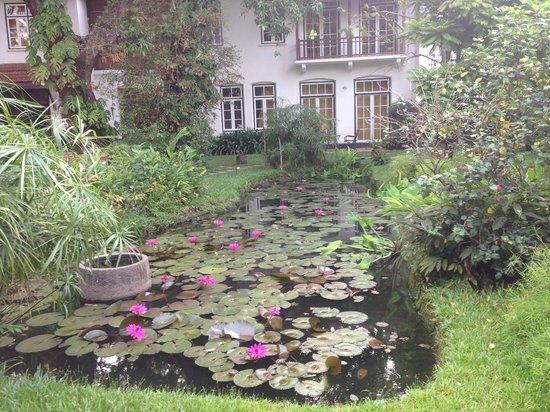 Old Harbour Hotel: Garden