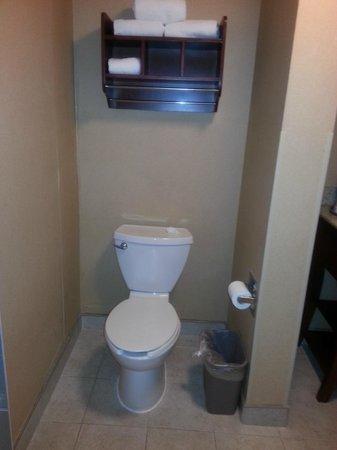 Hampton Inn by Hilton Guadalajara-Aeropuerto: Toilet/wall partition