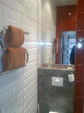 Lvovo Apartments: baño con secador de toallas