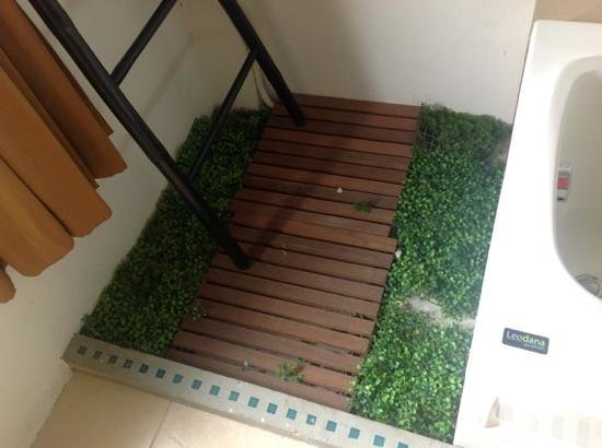 Bangkok Natural Spa & Resort: grotty make shift garden in room?