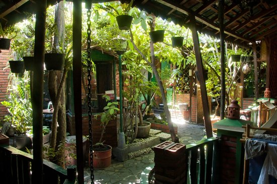 Kampoeng Djawa Hotel: Garden