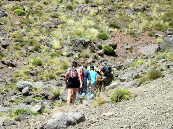 Trek Au Maroc Day Tours: www.Trekaumaroc.Net