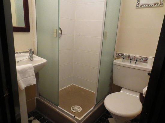 Globetrotters Tourist Hostel: baño pequeño