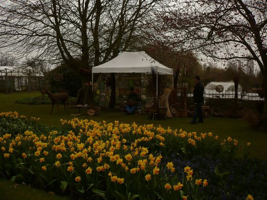 Capel Manor Gardens: Daffidols in bloom with the traditional basket weaver in the background