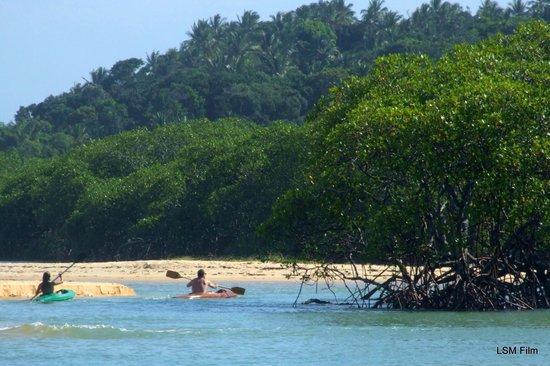Rio da Barra Beach: lindo rio pra nadar,remar de kaiak..obs a água do rio muito limpa..