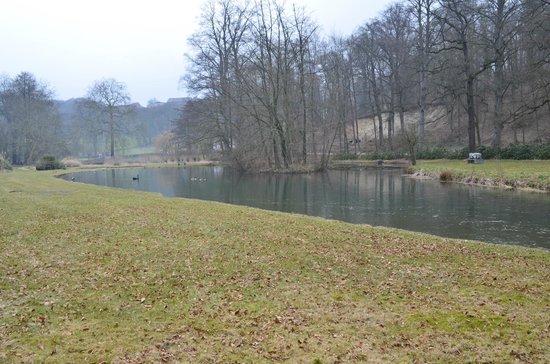 Landgoed Altembrouck: laghetto